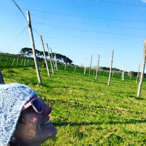 Sara dans le champ de houblon bio