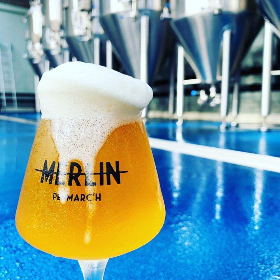 Visiter la brasserie Merlin Finistère et déguster une bonne bière fraiche