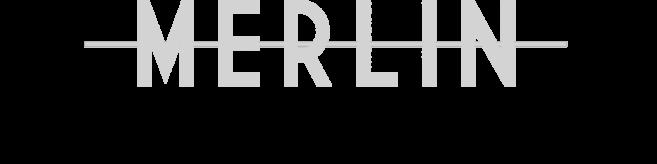 Logo Brasserie Merlin (accueil)